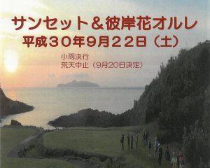 サンセット&彼岸花オルレ|九州オルレ唐津コース