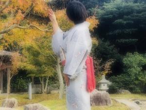 名護屋帯と桃山庭園
